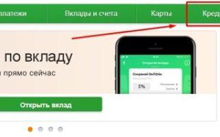 Досрочное погашение кредита в Сбербанке: как рассчитать дату платежа и список необходимых документов