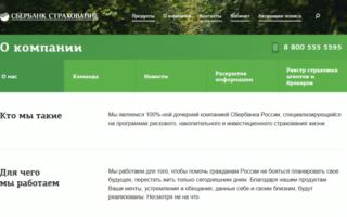 Защита семьи Сбербанк Страхование: страховка близких от банка России, преимущества и недостатки программы