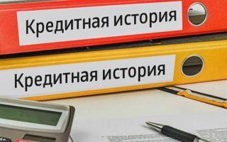 Ипотека для ИП Сбербанк: какие условия получения кредита в банке для индивидуального предпринимателя