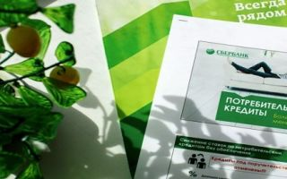 Взять кредит наличными в Сбербанке в 2020 году: кредитные программы