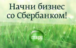 Каталог франшиза от Сбербанка: кредит на бизнес старт, список и как получить