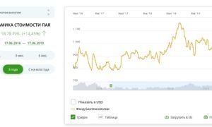 Сбербанк Биотехнологии: ПИФы банка России, управление активами доходности и динамика цены пая