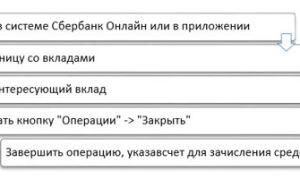Вклад «Управляй» в Сбербанке — условия в 2020 году и процентные ставки