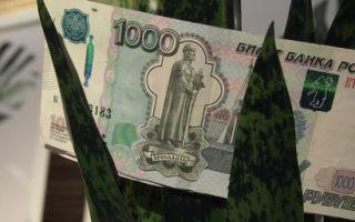 Где взять микрозайм до 70000 рублей: проценты в МФО и отзывы заемщиков