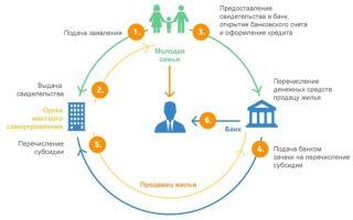 Ипотека для молодой семьи: как взять, основные особенности акции и требования к заемщикам