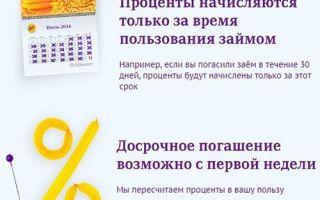 МФО Лига денег: как оформить займ онлайн и расчет процентов