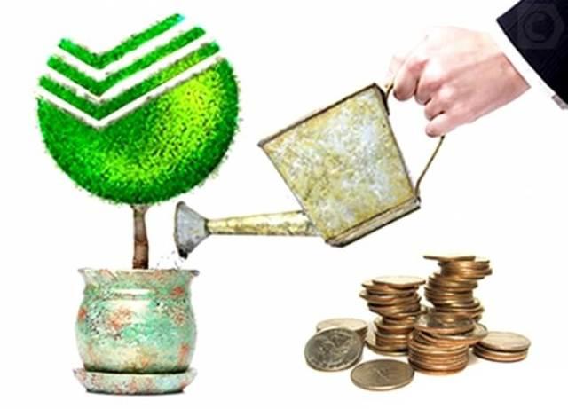 Что такое капитализация вклада в Сбербанке