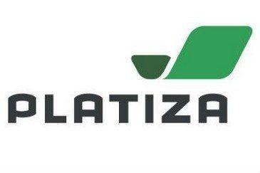 Микрозаймы в Платиза: оформление онлайн-заявки и сроки выдачи денег